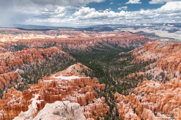 Bryce Canyon N.P., Utah, July 2010
