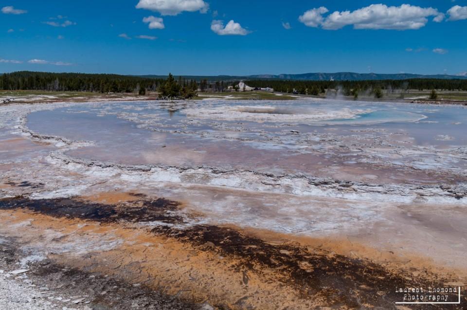 Yellowstone N.P., Wyoming, USA, July 2010
