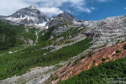 Glacier N.P., Montana, USA, July 2010